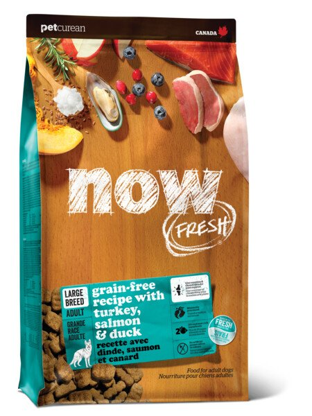 Now Fresh - Adult Large Breed - Turkey Salmon & Duck 25 LB