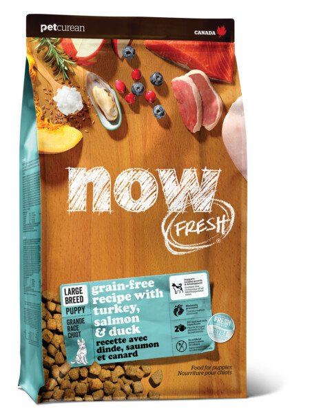 Now Fresh - Puppy Large Breed - Turkey Salmon & Duck 25LB